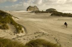 Wharariki Beach and Dunes