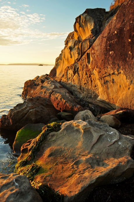 Saltwater sea spray eats away at the Chuckanut Sandstone creating spectacular honeycomb weathering formations along the coast