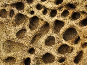 Close up of honeycomb weathering pits