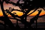Carmel_Beach_Sunset