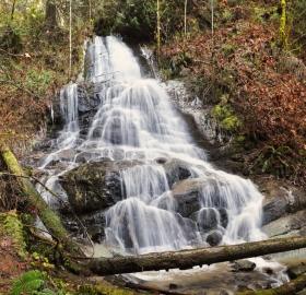 Austin Creek Falls