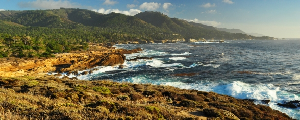 Coast at Point Lobos