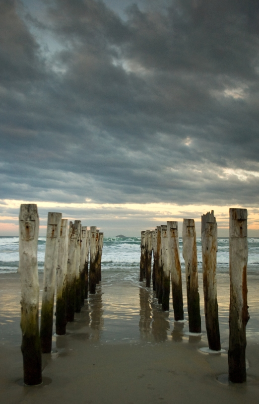 Old pier pilings, St. Clair Beach, Dunedin