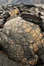 Cracks and fissures create fantastic patterns on young lava flows
