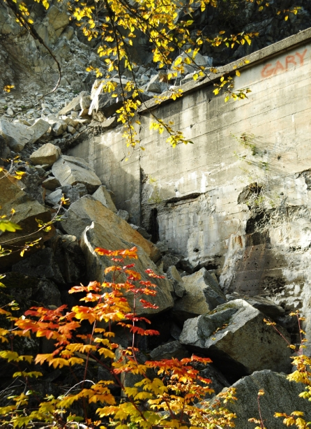 A rockfall along the Windy Point Tunnel is the backdrop for some fall foliage