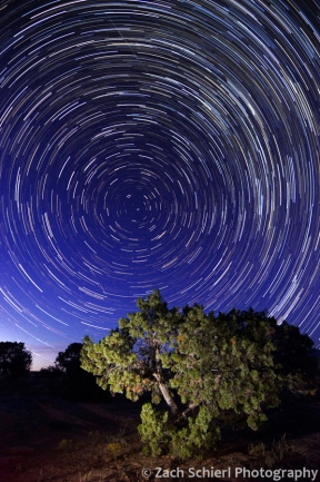 Star trails over Escalante Canyon, Colorado