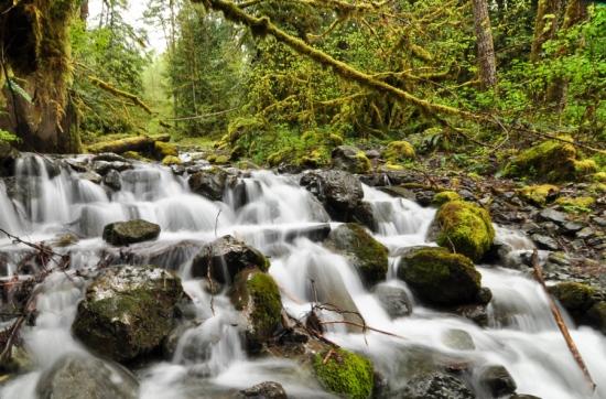 Nooksack River Cascade