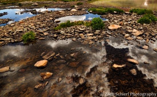Clouds reflected in a pond in Ice Lake Basin.