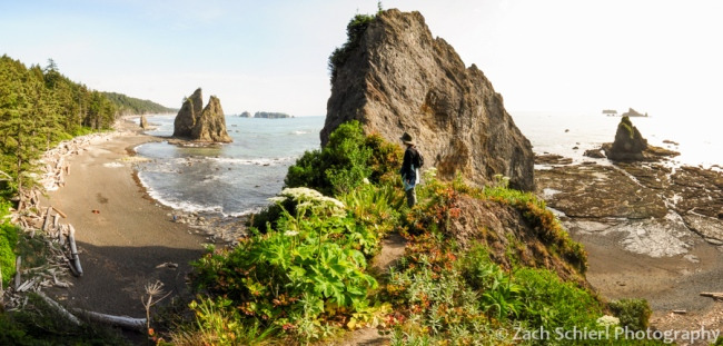 Panorama from top of Hole-in-the-Wall, Rialto Beach, Olympic National Park