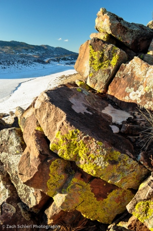 Lichens on sandstone boulders