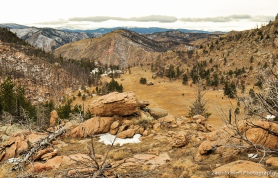 A view of Greyrock Meadow