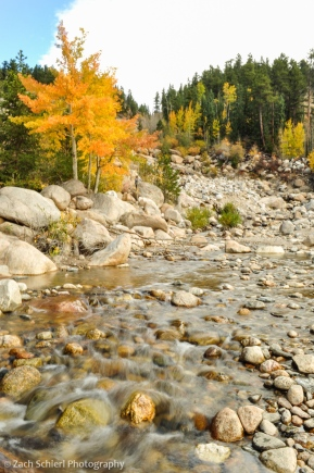 Golden aspens and creek in Rocky Mountain National Park