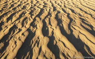 Ripples in sand dunes, Death Valley