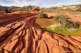cross beds in navajo sanstone, snow canyon state park, utah