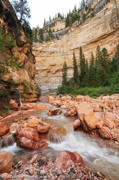 small waterfall along ashdown gorge