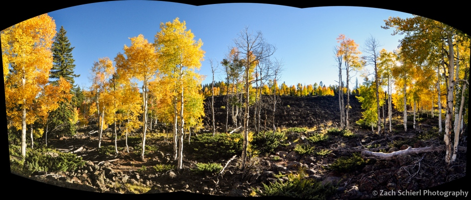 Colorful aspens dot lava flows on the Markagunt Plateau, UT