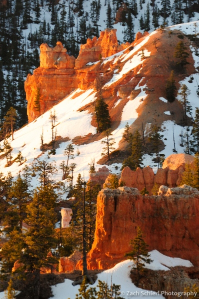 Hoodoos at sunrise, Bryce Canyon National Park
