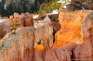 Sunrise light illuminates rock formations at Bryce Canyon National Park, Utah