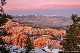 A classic Bryce view at sunset: looking northeast towards Powell Point (10,188′) and the Aquarius Plateau