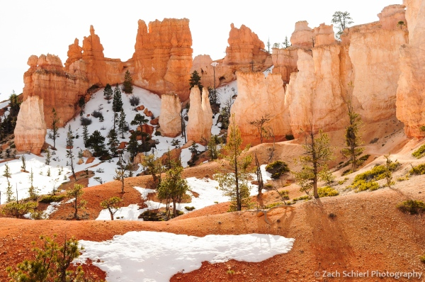 Hoodoos, fins, and walls at Bryce Canyon National Park