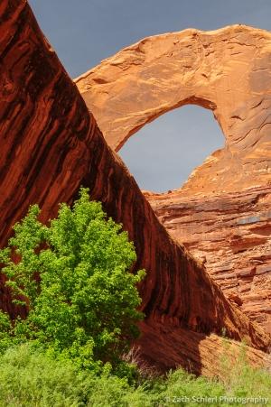 Stevens Arch, Glen Canyon National Recreation Area, Utah