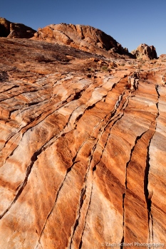Compaction bands in multi-colored Aztec Sandstone, Valley of Fire State Park, Nevada