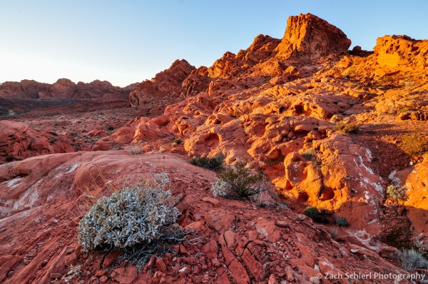 Colorful sunset on red rocks, Valley of Fire State Park, Nevada