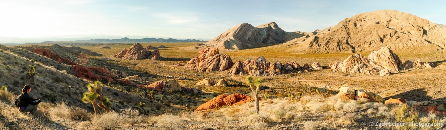 Late afternoon sunlight on sandstone rock formations and desert mountains