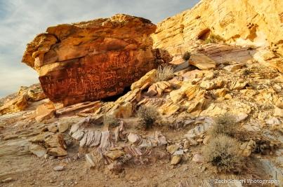 A large sandstone boulder containing numerous petroglyphs.