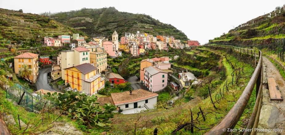 The village of Manarola spreads out below vineyards in a large ravine.