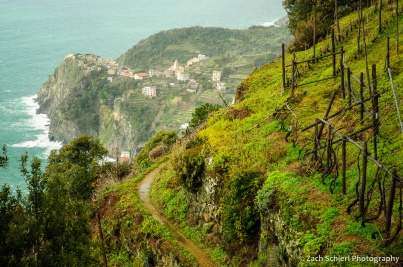 Stone terraces and vineyards frame a few of Corniglia in the distance