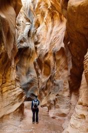 Narrow sandstone canyon walls