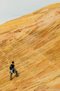 Yelow, red, orange, and pink swirls in the Navajo Sandstone