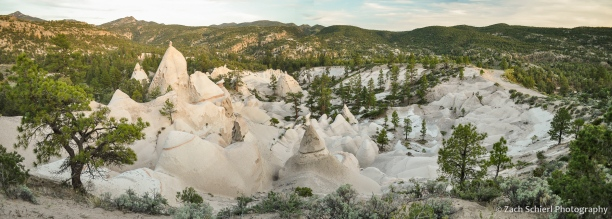 Intricately carved white rocks in a forest