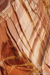 Streaks of mud and desert varnish coat a sandstone cliff