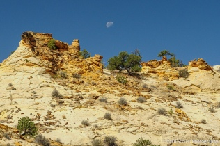 The moon sets over white and yellow rock formations.