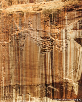 Various colors of brown, tan, and black desert varnish on the sandstone cliffs.