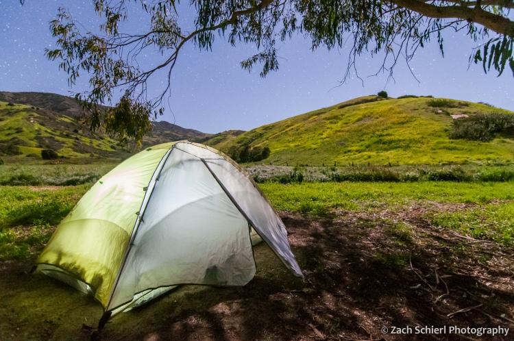 An illuminated tent beneath a tree. The landscape is illuminated by moonlight.