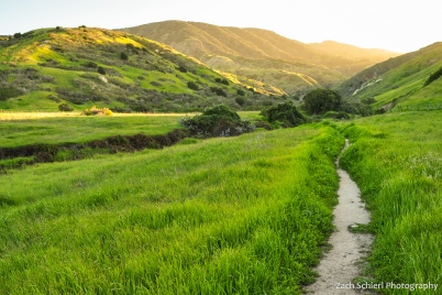 A trail passes through dense green grass with sunset-lit mountains in the background