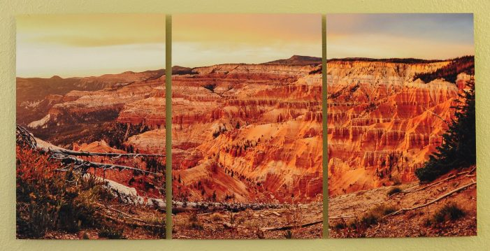 Three panel fine art metallic photographic print