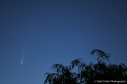 A comet with a bright nucleus and long tail appears in the pre-dawn sky.