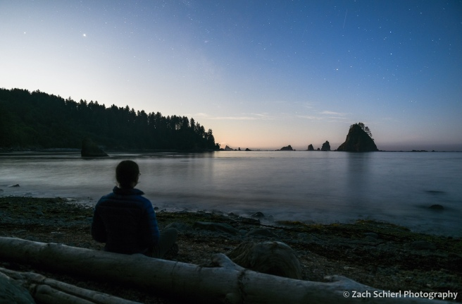 A person sits on a log along the beach watching the moon rise over the coastline.