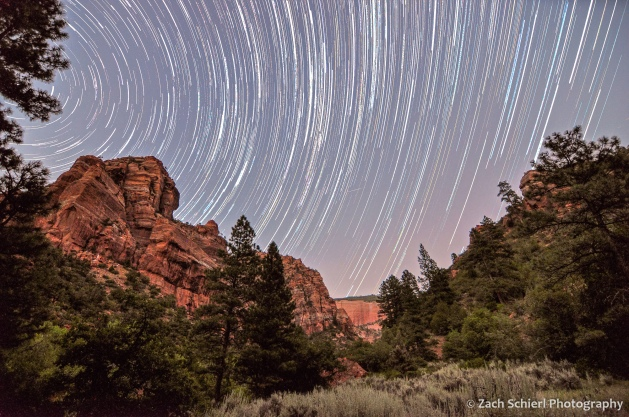 stars streak across a purple sky, with cliffs of red rock and lots of trees in a canyon below