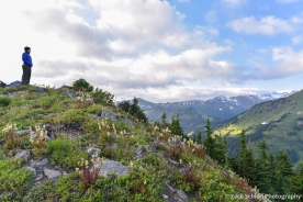 A hiker stands atop a ridge looking out onto grassy meadows and mountains